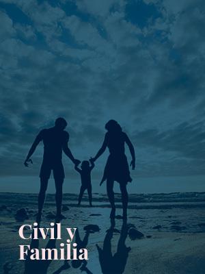 Abogados en derecho civil y de familia